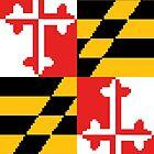 8-bit Maryland Flag (Portrait) by JoeyHawkins