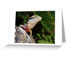 Australian Water Dragon Greeting Card