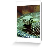 Hypnotiser Greeting Card