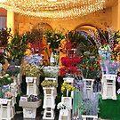 Winchester Flower Shop by lezvee