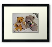 Teddies Old and Not So Old Framed Print