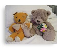 Teddies Old and Not So Old Canvas Print