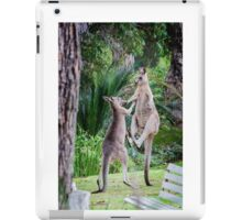 Male Kangaroos Fighting iPad Case/Skin