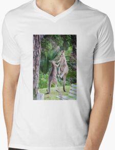 Male Kangaroos Fighting Mens V-Neck T-Shirt