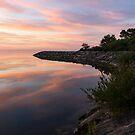 Colorful Cove - Still and Soft Dawn on Lake Ontario by Georgia Mizuleva