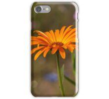 orange yellow marigold iPhone Case/Skin