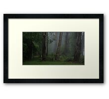 Fantasy - Mount Wilson NSW - The HDR Experience Framed Print