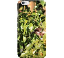 Who is Watching Who? iPhone Case/Skin