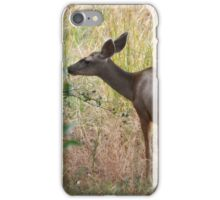 Doe iPhone Case/Skin