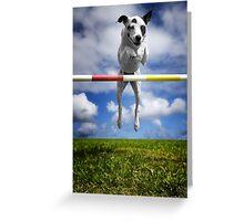 Zelda, RHOA, RHEXAJ: From Rescued Dog To Agility Champion Greeting Card
