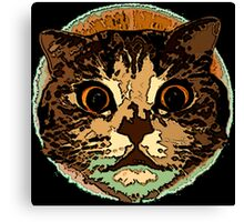 Cute Cat Face Canvas Print