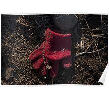 Glove 36 Poster