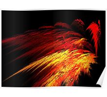 Sun Plumes Poster