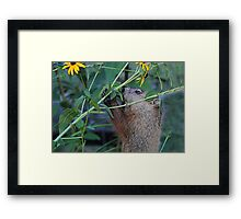 Please don't eat the flowers Framed Print
