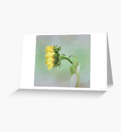 Sunflower in Profile Greeting Card