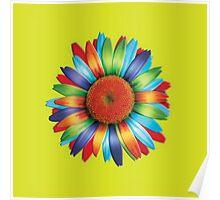 Multi-coloured Daisy Poster