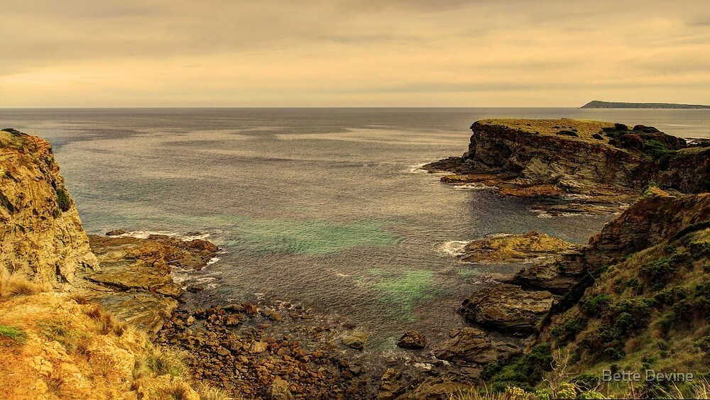 Southward to Bass Strait by Bette Devine