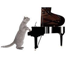 Piano Cat - Meowsicians by StrawberryMo