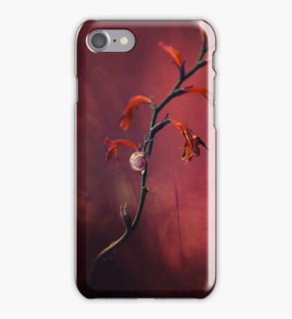 Small shel on the dry flowers iPhone Case/Skin