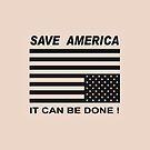 Save America by Albert