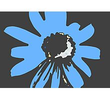 Retro pretty daisy blue black RMPD01 Photographic Print