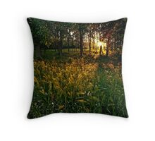 Like a fairy tale... Throw Pillow