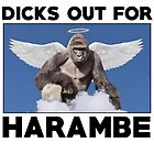 Dicks out for HARAMBE by GALAXE