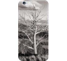 Mount Richardson Australia  iPhone Case/Skin