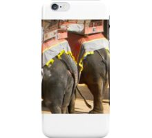 Elephants at Amber Fort iPhone Case/Skin