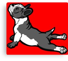 Boston Bull Terrier Puppy Black and White Canvas Print
