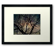 Tree silhouette with stars. Framed Print