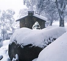 Timeless, Mount Buffalo VIC by Chris Munn