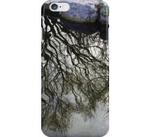 Branch water iPhone Case/Skin