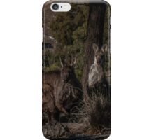 Old Man Wallaby and his Family iPhone Case/Skin
