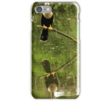 Anhinga off in the Distance iPhone Case/Skin
