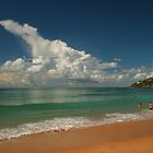 This Is Australia .. Palm Beach by Michael Matthews