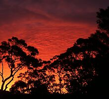 Stanwell Tops Sunset by Stuart Daddow Photography