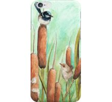 Superb Blue Wren's on Reeds iPhone Case/Skin