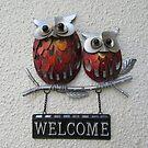 Welcome Owls by lezvee