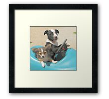 Yes!! I have my license!! Framed Print