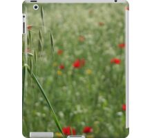 Seed Head With A Beautiful Blur of Poppies Background  iPad Case/Skin