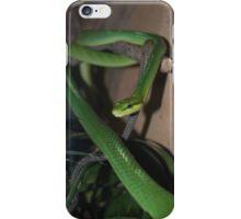 Red-Tailed Green Ratsnake iPhone Case/Skin
