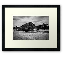 Country property Framed Print