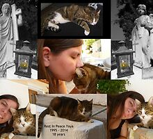 Rest In Peace Yaya by Vicki Spindler (VHS Photography)
