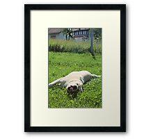 Bla Framed Print