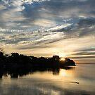 Pale Gold Sunrays - A Cloudy Sunrise with Two Ducks by Georgia Mizuleva