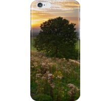 Dunstable Downs Sunset iPhone Case/Skin