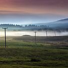 Dawn Mist Kilsyth Hills by Cat Perkinton