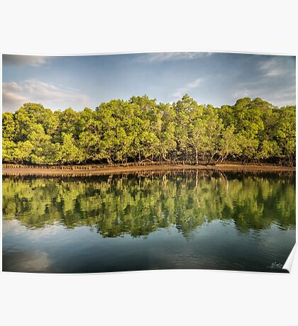 Rinca Island Reflections Poster