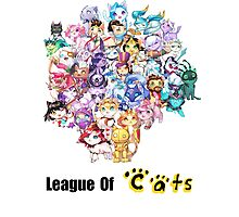 League Of Cats <3 Photographic Print